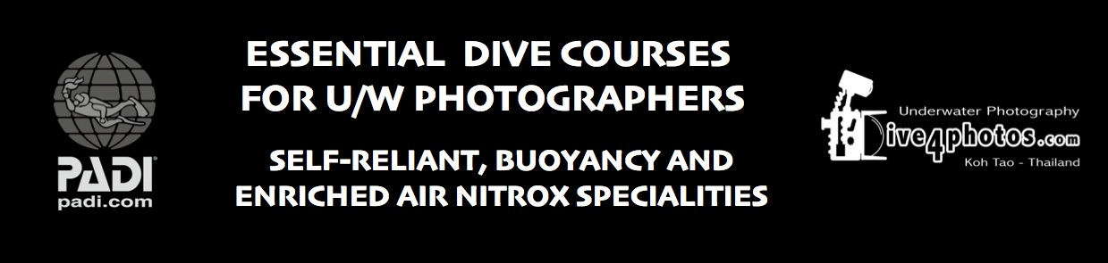 Essential-Dive-Courses-For-UW-Photograhers