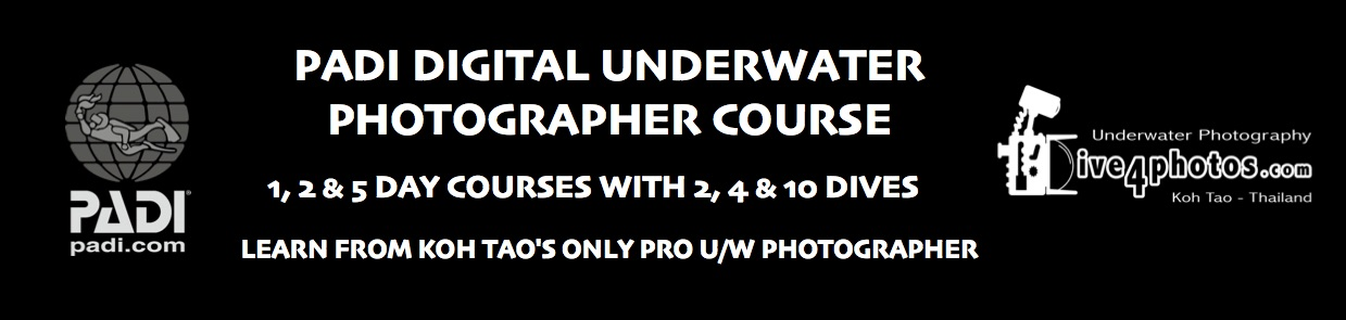 PADI-Digital-Underwater-Photographer-Course