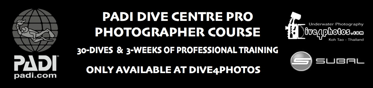 PADI-Dive-Centre-Pro-Photographer-Course